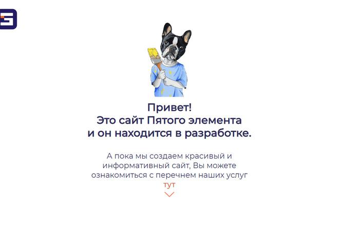 Профессионально и недорого сверстаю любой сайт из PSD макетов 23 - kwork.ru