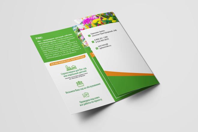 Дизайн брошюры, буклета 13 - kwork.ru