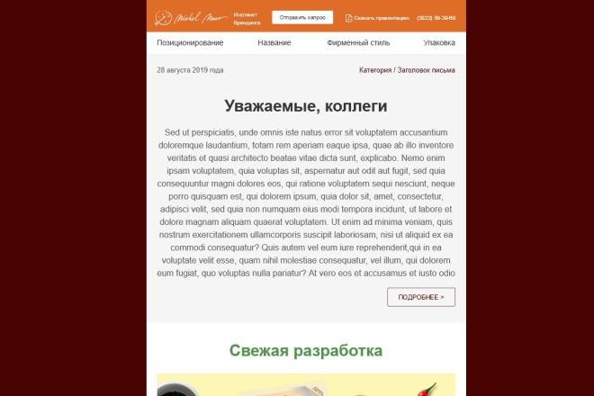Создание и вёрстка HTML письма для рассылки 98 - kwork.ru