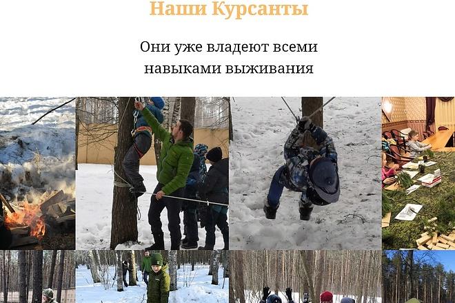 Создание сайта - Landing Page на Тильде 47 - kwork.ru