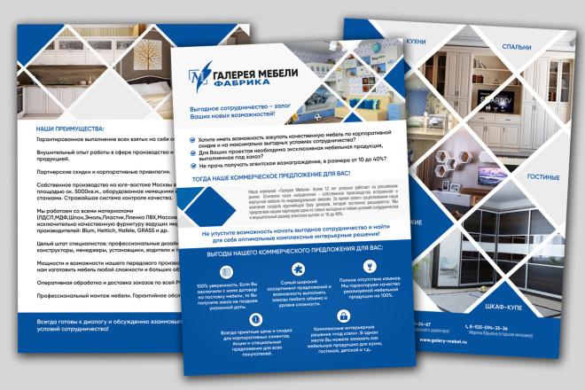 Разработаю дизайн листовки, флаера 115 - kwork.ru