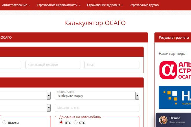 Качественная копия лендинга с установкой панели редактора 69 - kwork.ru