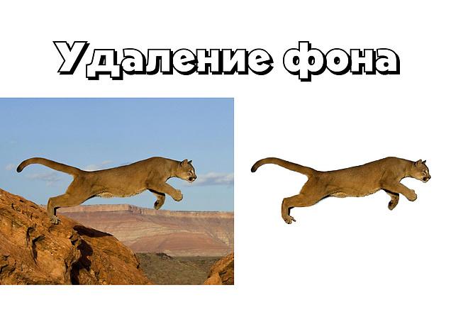 Удаление фона у 30 фотографий 15 - kwork.ru