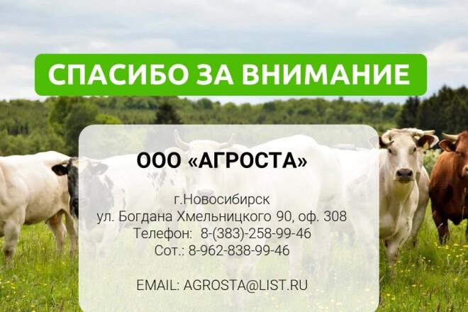 Разработка стильных презентаций 16 - kwork.ru