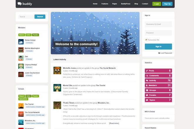 Тема BuddyPress для WordPress на русском с обновлениями 2 - kwork.ru