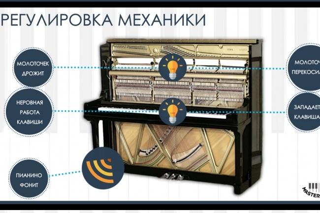 Создам инфографику 27 - kwork.ru