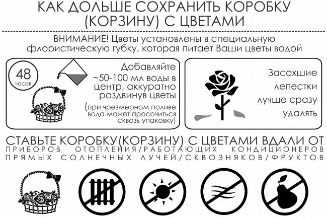 Создам инфографику 17 - kwork.ru