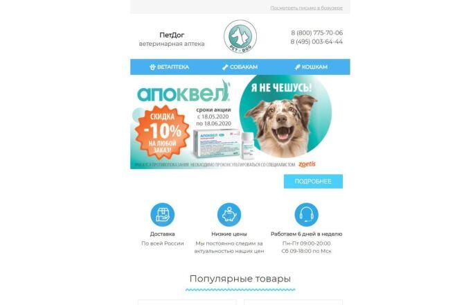 Создание и вёрстка HTML письма для рассылки 42 - kwork.ru