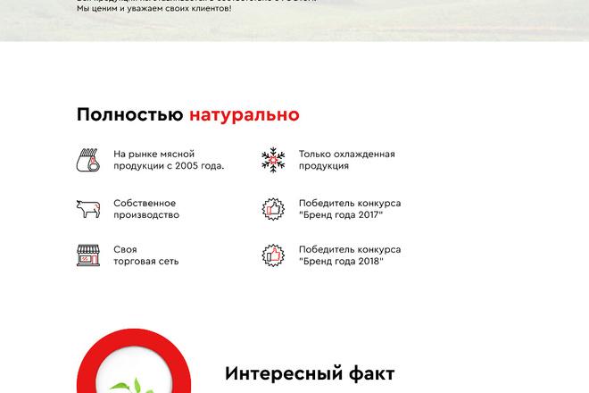 Создание Landing Page, одностраничный сайт под ключ на Tilda 22 - kwork.ru