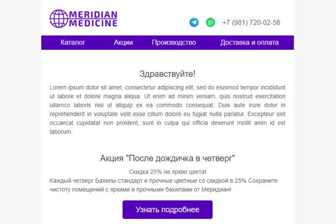 Создание и вёрстка HTML письма для рассылки 44 - kwork.ru