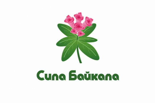 Разработаю логотип для Вашей компании 52 - kwork.ru