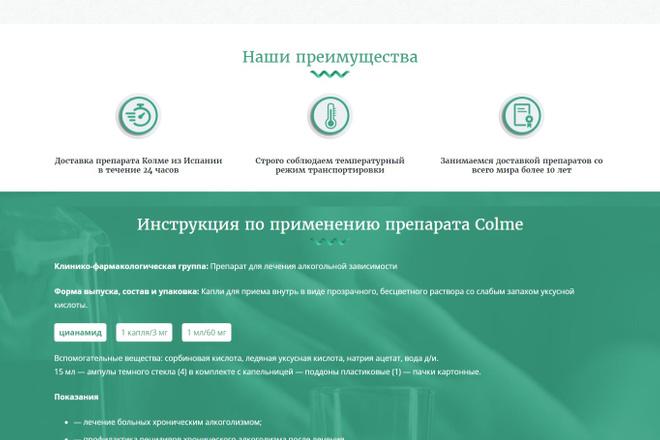Создание красивого адаптивного лендинга на Вордпресс 12 - kwork.ru
