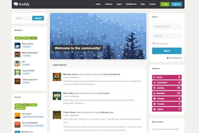 Тема BuddyPress для WordPress на русском с обновлениями 3 - kwork.ru