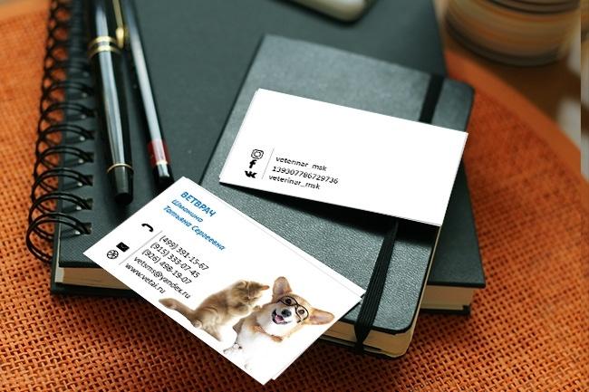 Сделаю дизайн-макет визитной карточки 15 - kwork.ru
