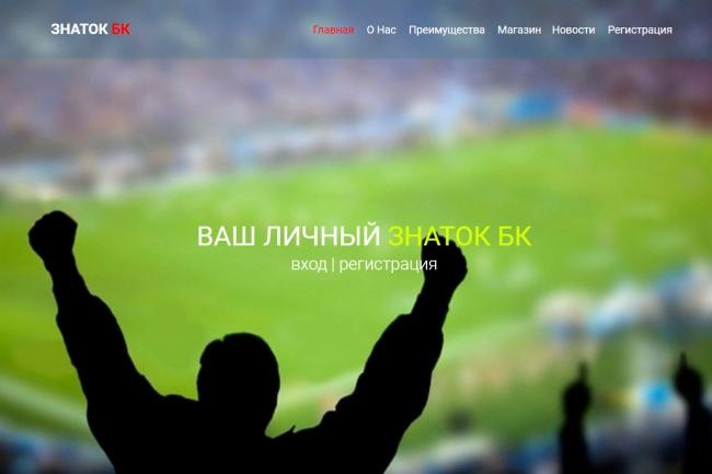 Создам простенький landing-page 17 - kwork.ru