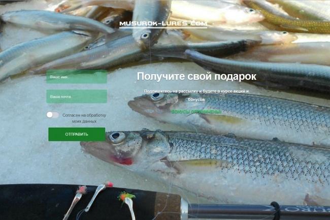 Создам простенький landing-page 14 - kwork.ru