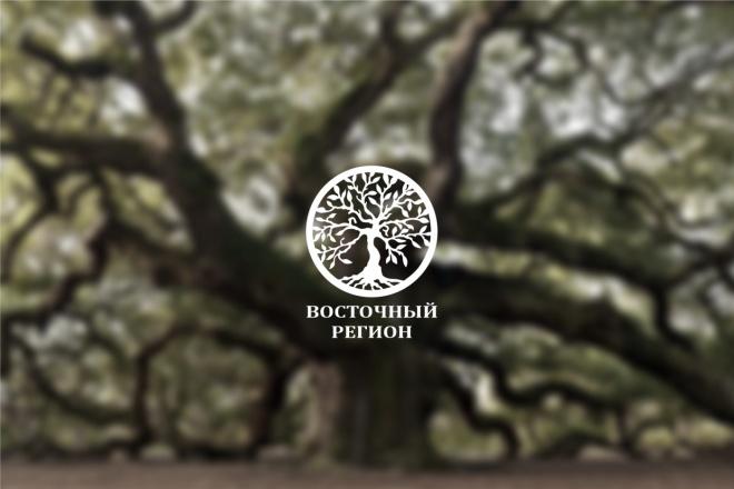 Логотип по вашему эскизу в векторе 3 - kwork.ru