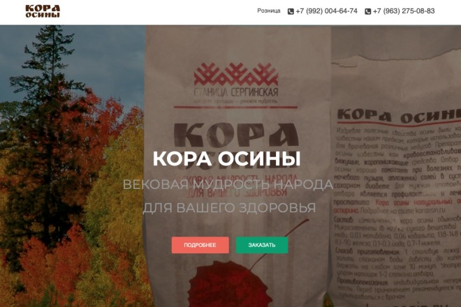 Создание одностраничника на Wordpress 12 - kwork.ru