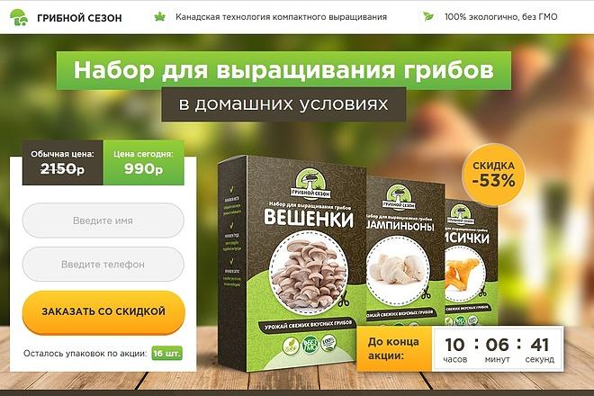 Копии двух лендингов из каталогов товарных CPA за 500 рублей 20 - kwork.ru