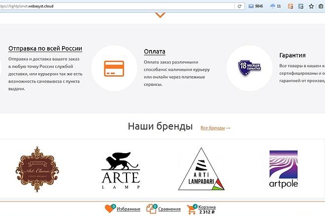 Настройка и установка Webasyst Shop-Script 5,6, 7,8 6 - kwork.ru