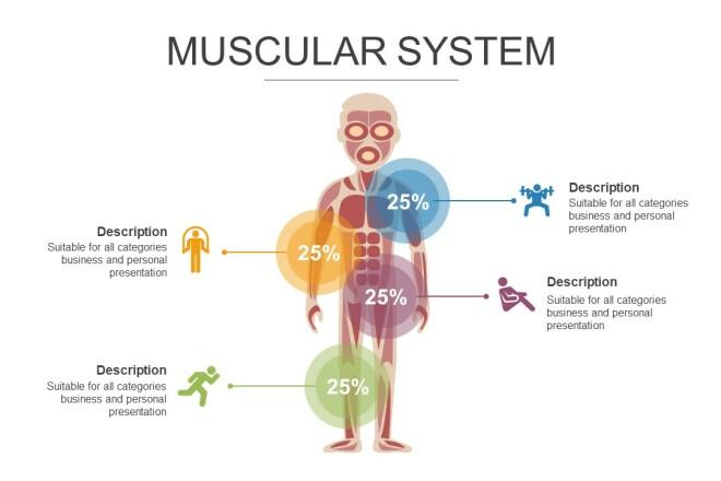 Инфографика на медицинскую тему. Шаблоны PowerPoint 8 - kwork.ru