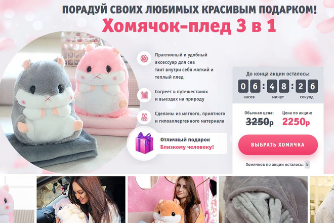 Скопировать Landing page, одностраничный сайт, посадочную страницу 23 - kwork.ru