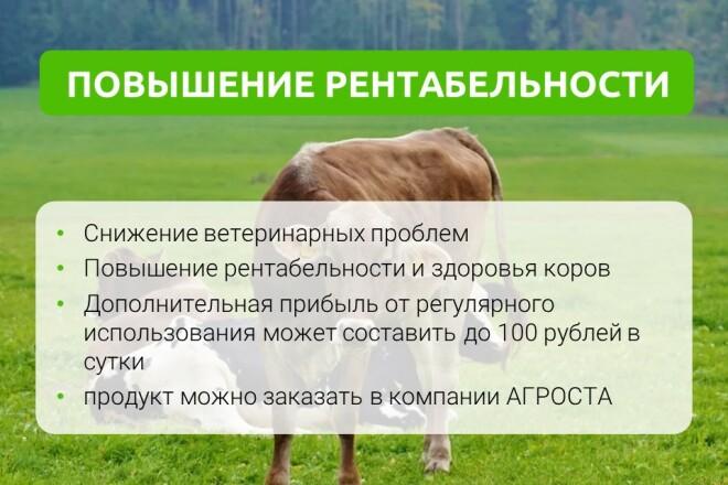 Разработка стильных презентаций 14 - kwork.ru