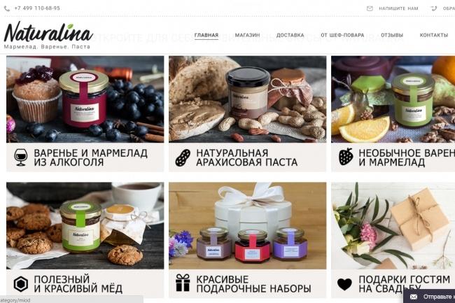 Создание сайтов на конструкторе сайтов WIX, nethouse 87 - kwork.ru