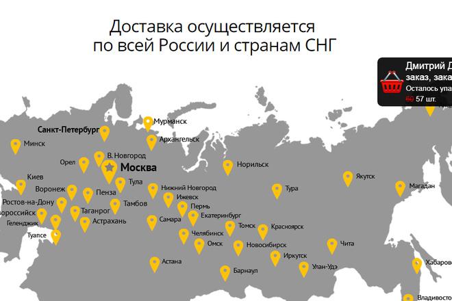 Качественная копия лендинга с установкой панели редактора 92 - kwork.ru