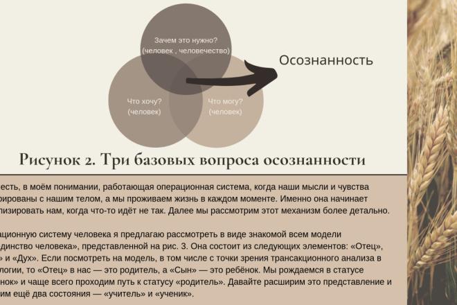 Стильный дизайн презентации 284 - kwork.ru