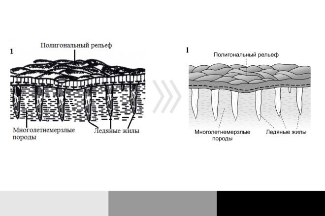 Отрисую в вектор растровое изображение любой сложности.cdr, ai, eps 11 - kwork.ru