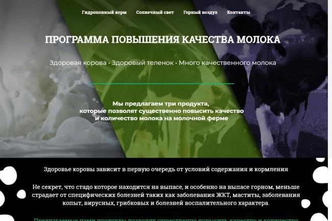 Создание красивого адаптивного лендинга на Вордпресс 66 - kwork.ru