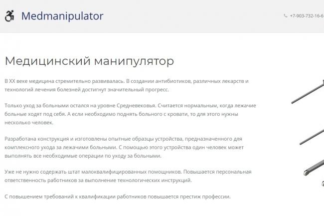 Создание красивого адаптивного лендинга на Вордпресс 71 - kwork.ru