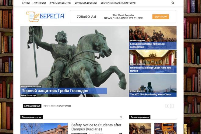 Создам красивый адаптивный блог, новостной сайт 25 - kwork.ru