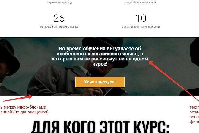Лендинг для любых целей на Wordpress 28 - kwork.ru