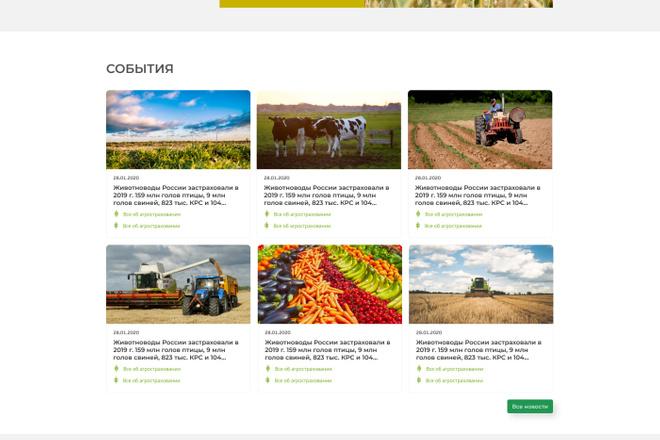 Уникальный дизайн сайта для вас. Интернет магазины и другие сайты 51 - kwork.ru