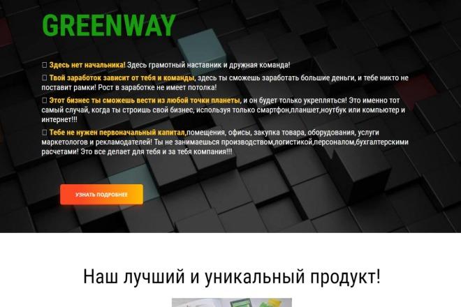 Скопирую Landing Page, Одностраничный сайт 16 - kwork.ru