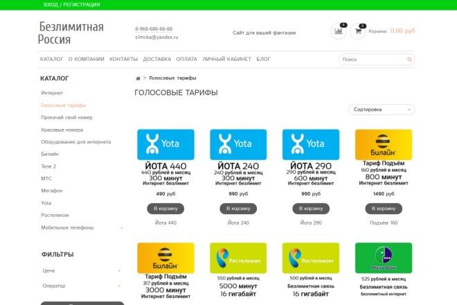 Профессионально создам интернет-магазин на insales + 20 дней бесплатно 14 - kwork.ru