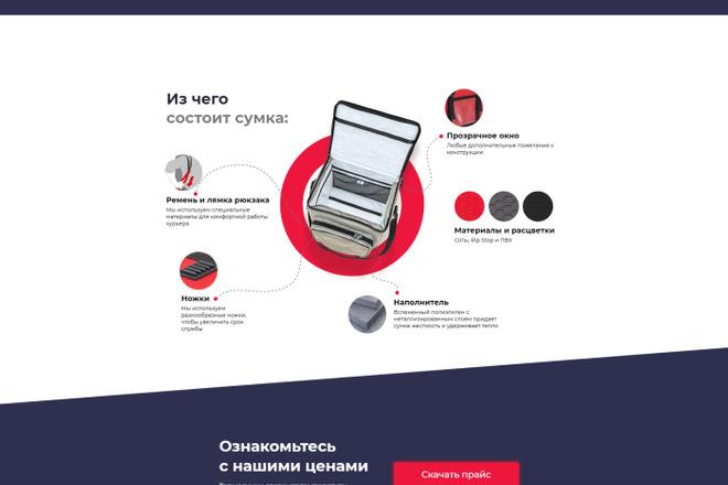 Перенос, экспорт, копирование сайта с Tilda на ваш хостинг 1 - kwork.ru