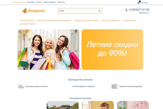 Профессионально создам интернет-магазин на insales + 20 дней бесплатно 64 - kwork.ru
