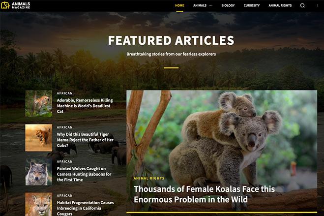 Создадим блог, журнал, новостной портал на WordPress 2 - kwork.ru