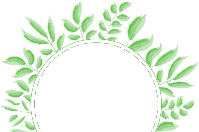 Ботаническая иллюстрация 4 - kwork.ru