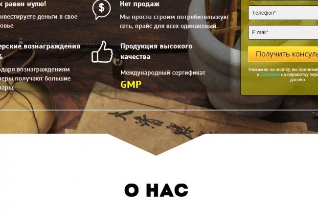 Создам лендинг на популярных платформах 32 - kwork.ru