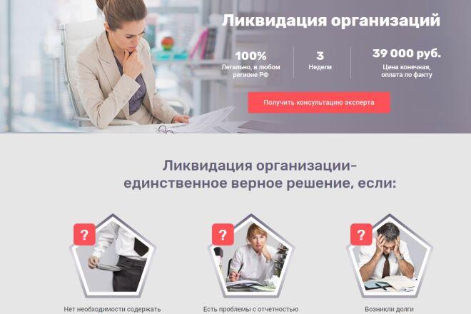 Скопировать Landing page, одностраничный сайт, посадочную страницу 2 - kwork.ru