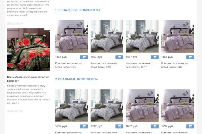 Профессионально создам интернет-магазин на insales + 20 дней бесплатно 26 - kwork.ru
