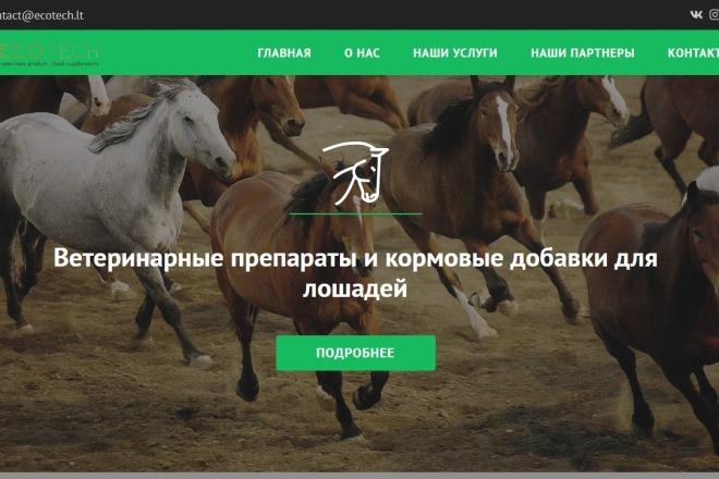 Сайт под ключ. Landing Page. Backend 113 - kwork.ru