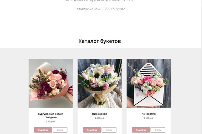 Создам интернет-магазин на Тильда 6 - kwork.ru
