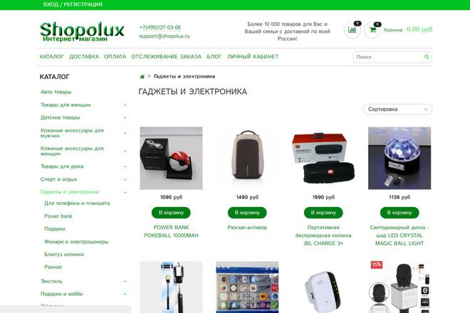 Профессионально создам интернет-магазин на insales + 20 дней бесплатно 67 - kwork.ru