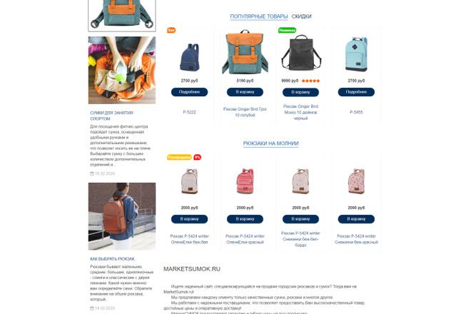 Профессионально создам интернет-магазин на insales + 20 дней бесплатно 53 - kwork.ru