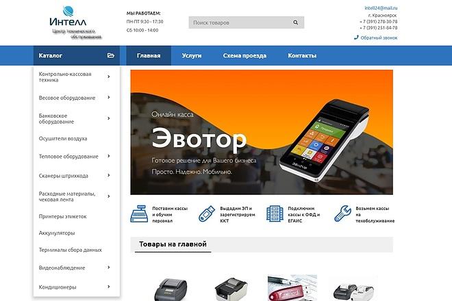 Профессионально создам интернет-магазин на insales + 20 дней бесплатно 37 - kwork.ru